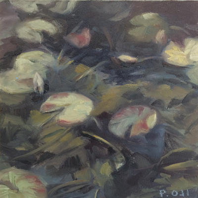 patricia oji waterlilies